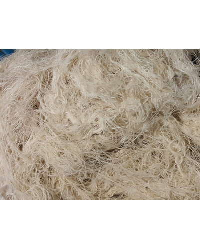 Cotton Waste (Above All)-5202101