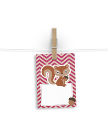 The Cutesy squirrel Gift Tags